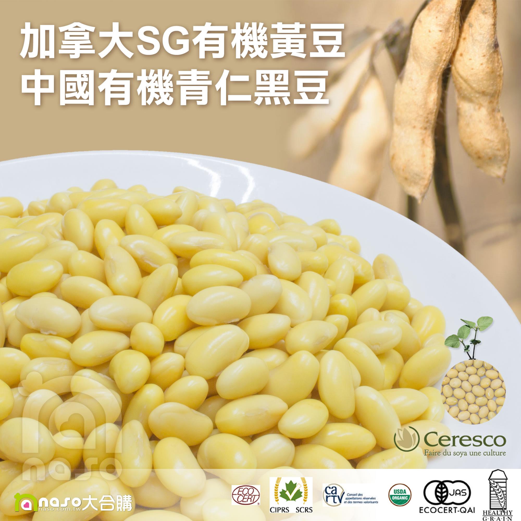 加拿大SG非基改有機黃豆(30kg)/中國非基改有機青仁黑豆(25kg)好評第13團